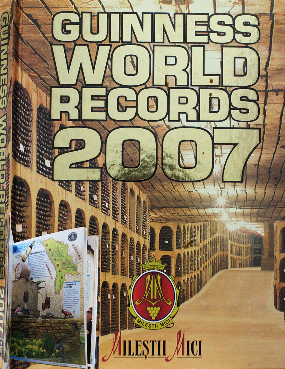 Guinness World Records 2007 book